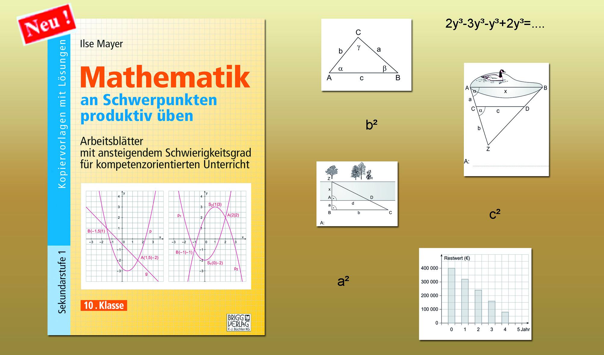 Mit neuen Lern- und Lösungswegen Mathematik verstehen! - Brigg ...
